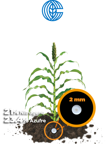 beneficios cristamax